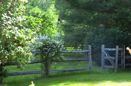 hollis-nh-wood-fence.JPG